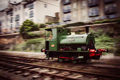 Teddy (*Hairbear) Tags: green train teddy railway choochoo harbourside littletrainthatcould