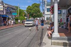Leica Q - L1030465 (sswee38823) Tags: leica summer ma downtown provincetown capecod massachusetts 28mm q summilux leicacamera commercialst leicaq leicaqtype116 leicasummilux28mmf17asph summilux28mmf17asph