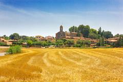 _MG_7572 (Lost-Travelers) Tags: emporda baix girona catalunya paisatge paisaje