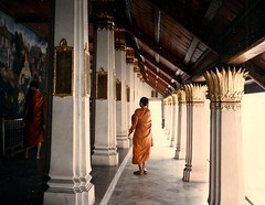 Thailand (3) (The Spirit of the World) Tags: monk buddhism religion overhang temple gold wat grandpalace murals nationalepic bangkok thailand asia seasia film print analogphotography ramayana 1986