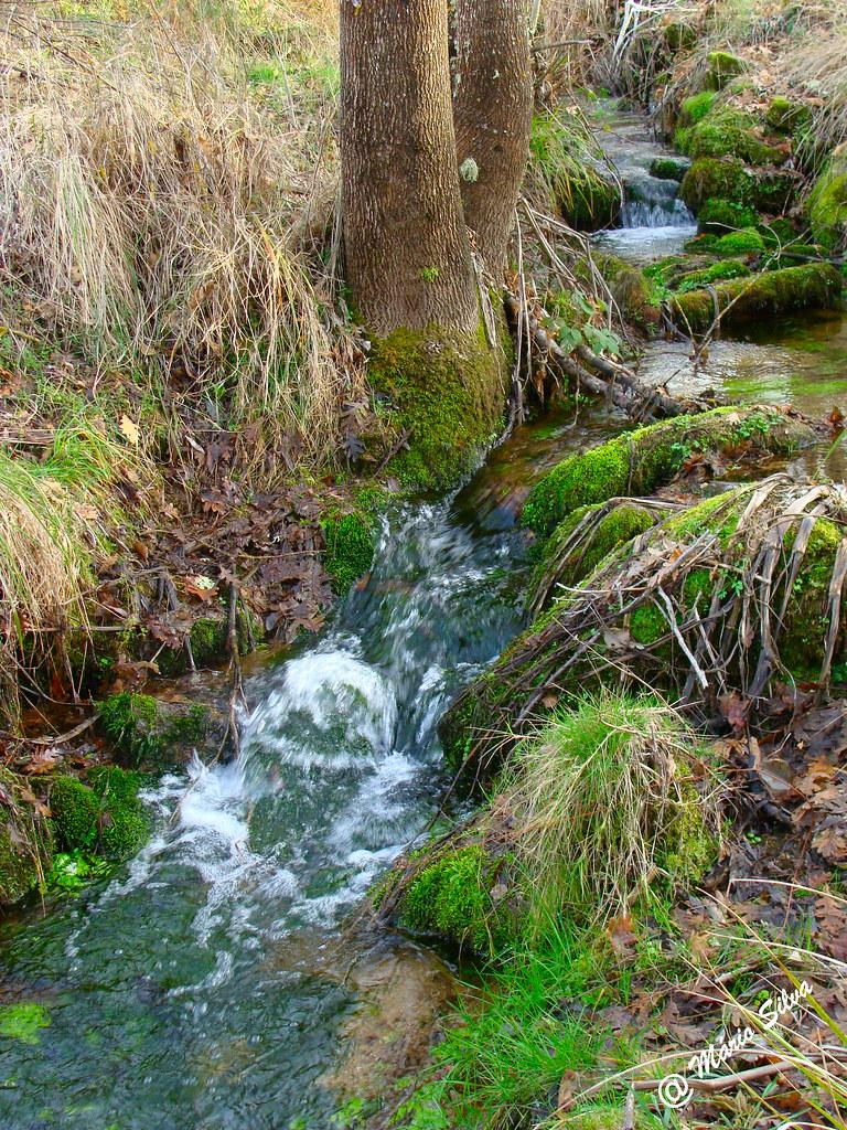 Águas frias (Chaves) - ... corre a água em louca correria ...