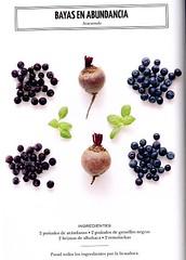 Bayas en abundancia (sucsverds) Tags: ferngreen zumo azucarado arándanos grosellasnegras albahaca remolacha es ai fd