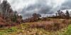 IMG_2219-22Ptzl1scTBbLGE2 (ultravivid imaging) Tags: ultravividimaging ultra vivid imaging ultravivid colorful canon canon5dmk2 clouds fields farm rural scenic vista autumn autumncolors stormclouds
