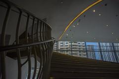 2017.01.18 台中市 國家歌劇院 (yenlinchen0404) Tags: 台中市 國家歌劇院 樓梯 stair national taichung theater