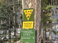 West Bragg Creek Winter Hike - Various trails - The rules (benlarhome) Tags: braggcreek westbraggcreek alberta canada hike hiking trek trekking trail path