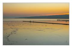 Evening at the lake (bavare51) Tags: tollensesee eisschollen möwen sonnenuntergang vögel küstenstreifen buhne birds water ice landscape sunset