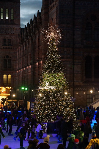 Swarovski Christmas Tree, Natural History Museum, Cromwell Road, South Kensington, Royal Borough of Kensington and Chelsea, London