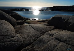 Rocks and Water (photo fiddler) Tags: shore rocky sun peggyscove january 2017