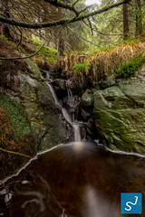 Waterfall Harz (Joon Stemmermann) Tags: harz waterfall water herbst atumn germany nationalpark stone trees tree longtime