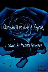 https://www.facebook.com/MossoTiziana/ #Tiziana #Mosso #Tizi #Twister #Titty #love #link #page #facebook #aforisma #citazione #frase #buongiornoatutti #buonpomeriggio #buonaserata #buonanotte #atutti #adomani #rose #blue #amore (tizianamosso) Tags: blue citazione adomani tiziana link titty facebook twister amore tizi mosso love buonpomeriggio buonanotte rose buongiornoatutti frase atutti buonaserata page aforisma