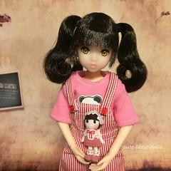 I love this little doll❤️ (cute-little-dolls) Tags: miniature doll kawaii fairskin littlelady minidoll petworks twintail ruruko