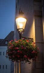 Streetlight (Matt H. Imaging) Tags: light netherlands maastricht evening sony slt a55 sonyalpha slta55v sal35f18 ©matthimaging