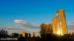 Nice weather of Beijing -- E-M5 markII (Thomas_Yung) Tags: life home living beijing olympus 2015 lumix20f17 em5markii