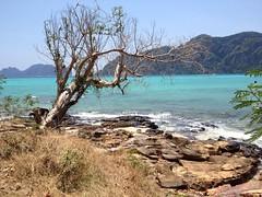 Thai sea (akrams83) Tags: sea summer wallpaper vacation tree nature thailand coast breeze