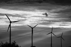 IMG_8252 1 (martin.gaisberger) Tags: blackandwhite bw canon eos austria sterreich energy wind energie niedersterreich windpark 550d rebelt2i
