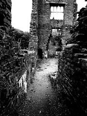 Neath Abbey Photoshop (tahliadavid) Tags: light white black colour abandoned abbey photoshop buildings saturation change hue edit transform neath