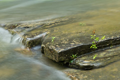Beaver Creek Water Flow (allenschnibben) Tags: park oklahoma water creek rocks long exposure state bend beavers