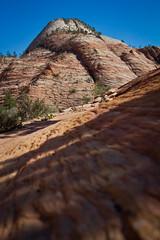 Zion National Park (Greg Berkey Photography) Tags: yellowstonenationalpark zionnationalpark brycecanyonutah jacksonholewyoming jennylakegrandtetonnationalpark vacation2015zionnationalpark