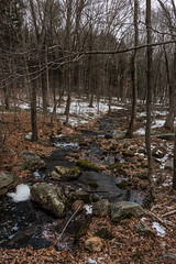 Holbrook Pond, Hebron, CT (billandkent) Tags: billcannon connecticut hebron hebronconnecticut holbrookpond us usa unitedstates billandkent 2016 stream forest