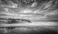 Warren Dunes (mswan777) Tags: dune sand beach lake michigan contrails warren dunes bridgman stream waves great lakes ansel black white