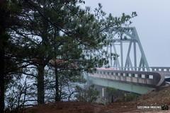 Foggy Morning at Browns Bridge (The Suss-Man (Mike)) Tags: brownsbridge cumming fog foggy foggymorning forsythcounty gainesville georgia hallcounty lake lakelanier lanier nature reflection sonyilca77m2 sussmanimaging thesussman water