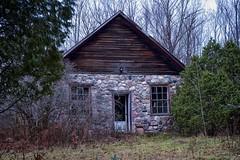 abandoned stone house (twurdemann) Tags: abandoned baseline bush derelict detailextractor fujixt1 highway548 hiltontownship hovel longexposure nikcolorefex procontrast stjosephisland stonehouse tinroof toad uline winter xf1855mm