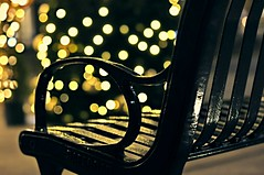 street bokeh (Eggii) Tags: piotrkowskastreet onthestreet myloveforbokeh bokehstreet bokeh lamps banch lodz mycity myplace festivetime