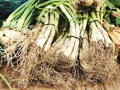 Vegetable Healthy Eating Freshness Food And Drink Food For Sale No People Market Stall Retail  Market Green Color Large Group Of Objects Day Close-up Outdoors Market מייפוד מייאייפון7 מייתרשיחא (dinalfs) Tags: vegetable healthyeating freshness foodanddrink food forsale nopeople marketstall retail market greencolor largegroupofobjects day closeup outdoors מייפוד מייאייפון7 מייתרשיחא