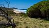 North from headland (jack eastlake) Tags: beach north mimosa rocks national park middle lagoon far south coast nsw tathra bega valley gillards