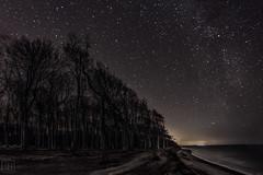 Gespensterwald Nienhagen @night (LB-fotos) Tags: night nacht gespensterwald germany deutschland ostsee baltic sea fisheye 8mm