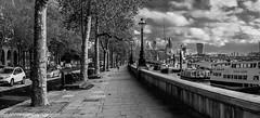 Views along the River Thames embankment. (steve.gombocz) Tags: urbanstreet blacknwhite greyscale streetscene blackwhite bwphotos bwstreetscenes bw bwstreet flickrbw bwflickr blackwhitephotos blackwhitephotography flickrstreet blackwhitestreet bwstreetphotography streetlife street streetscenery blackandwhite streetscenes streetphotographs bwphotographs streetbw noiretblanc schwarzundweiss negroyblanco zwartwit neroebianco sortoghvid mustavalkoinen svarthvitt svartoghvitt svartochvitt czarnyibiaty pretoebranco noirblanc negroblanco pretobranco schwarzweiss nerobianco olympus olympususers olympuscamerausers olympusbw olympusmzuiko25mmf18lens olympusem5mark2 olympusm25mmf18 olympuseurope photosinblackandwhite flickrblackandwhitephotos olympusdigitalcamerausers micro43rdsuk olympuszuikodigitalclub bwpictures london londonbw londonmonochrome londonscenes londonphotographs londonblackwhite flickraddicts explorebw out outandabout streetpictures explorestreet explore flickr thamesembankment londonriverembankment primelens primelenses