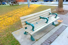 """Work hard, be kind and amazing things will happen."" (Trinimusic2008) Tags: trinimusic2008 judymeikle bench january 2017 urban yesterday toronto to ontario canada hbm light shadow"