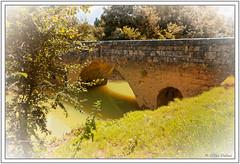 Pont vers Compostelle (GilDays) Tags: france aquitaine gers périgord nikon pont bridge eau water rivière river osse larressingle vert green arbre tree pontdelartigue viapublicasanctijacobi d800 nikond800