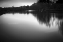 Long Water (154of365) (Reckless Times) Tags: longexposure long exposure nd 10 nd10 water mono blackwhite blackandwhite black whitre portmeadow meadow river thames