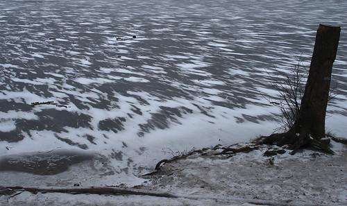 Krumme Lanke zugefroren 7
