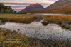 Clair Dawn (4) (Shuggie!!) Tags: autumn dawn grasses hdr highlands hills landscape morninglight mountains scotland shoreline torridon trees westerross zenfolio karl williams karlwilliams