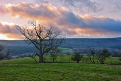 Sunrise over Claybank. (paul downing) Tags: pauldowning pd1001 pauldowningphotography nikon d7200 sunrise winter clevelandhills claybank singletree hitech gnd 12 filters