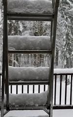 Going up. (shireye) Tags: comoxvalley bc britishcolumbia vancouverisland snow ladder winter
