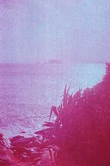 D1040017_lr (chi.ilpleut) Tags: kinmen taiwan island quemoy 2017 chinesenewyear lunar film expiredfilm kodakelitechrome100 iso100 crossprocessing 135mm 35mm analogue ilovefilms kodakfilm 底片 過期底片 柯達 記憶 蹤跡 金門鎏金之島kinmen 台灣 海島 島嶼 外島 回憶 走春 大晴天拍照天 晃晃 隨拍 我不在,就在去海邊的路上 海景 outing 冬陽 暖暖 暖陽 思念 漫步