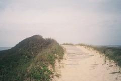 764277T-R1-019-8 (aspininaspiritcar) Tags: ocean sea summer sky film beach field ferry 35mm boat marthas vineyard sand rocks minolta massachusetts atlantic marthasvineyard