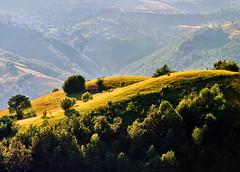 Yellow fields (Katarina 2353) Tags: mountain landscape serbia fields umadija serbiainspired