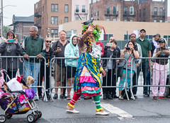 Ms. Colombia was at the Mermaid Parade (UrbanphotoZ) Tags: nyc newyorkcity dog ny newyork socks brooklyn scarf coneyisland colorful stroller feather rosa parrot bow mermaidparade multicolor petticoat onlookers mismatched 2015 oswaldogomez mscolombia