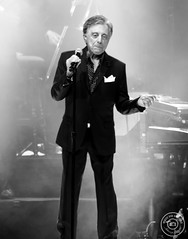 Frankie Valli & The Four Seasons by Stacey Auld