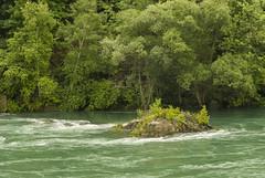 Niagara Glen_17 (rumimume) Tags: ontario canada nature water canon river niagarafalls photo still walk sigma glen gorge niagaraglen niagarariver 2015 550d t2i rumimume