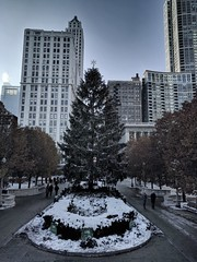 Lights (ancientlives) Tags: chicago illinois usa travel monday december 2016 autumn snow cold weather freezing ice bluesky buildings architecture skyline cityscape michiganavenue millenniumpark downtown loop towers skyscrapers christmas tree cloudgate
