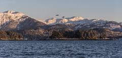 Juneau Mtns 3430 (Gillfoto) Tags: juneau alaska