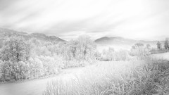 ...lostinwhite... (*ines_maria) Tags: panasonicdmcgx8 light blackandwhite bw white 2017 outside mountain austria kärnten österreich hoarfrost raureif nebelstimmung foggy fog landscape monochrome mono nebel seaoffog