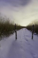 Winter Helsinki (kasper.nyman) Tags: winter nikon d7100 helsinki sunrise 1224mmf4