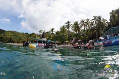 slu_bradh_V55A1029013 (kaufmankronicle) Tags: diving kidsseacamp stlucia