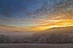Sunrise - Explore (Rita Eberle-Wessner) Tags: sunrise sonnenaufgang morgen morning himmel sky clouds winter raureif hoarfrost landscape landschaft wolken gold odenwald
